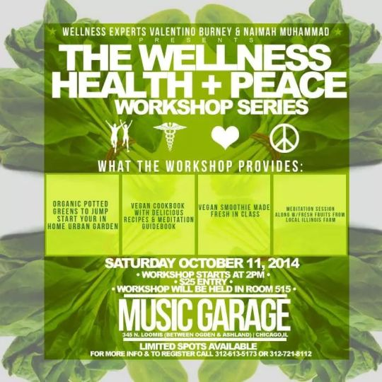 To Register for the Wellness, Health & Peace Workshop call 312.721.8112!